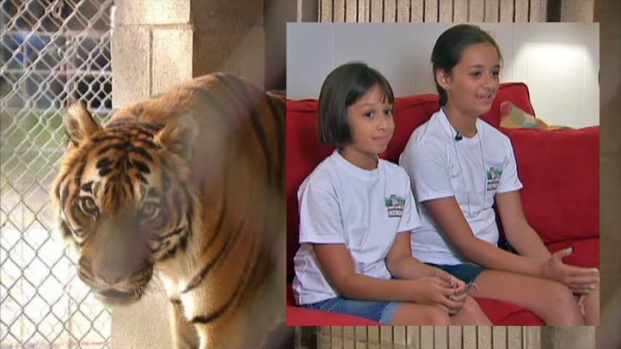 [DFW] Kids Raise Money for Big Cats Sickened by Distemper