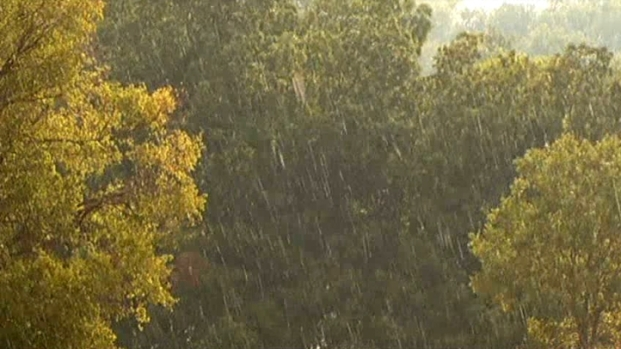 [DFW] Dallas Welcomes Splash of Rain