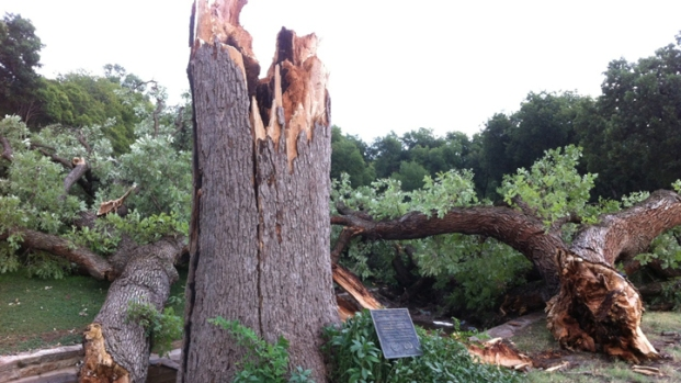 Your Storm Photos: Aug. 13, 2013