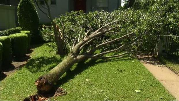 [DFW] The National Weather Service Assesses Damage