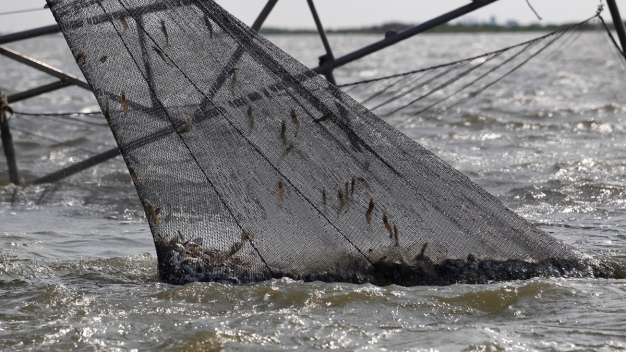 Fishermen Still Struggling 5 Years After BP Gulf Spill