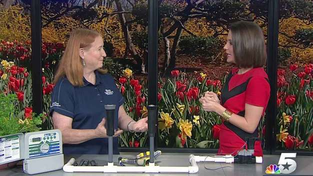 Dotty Woodson: Irrigation & Plumbing Leaks