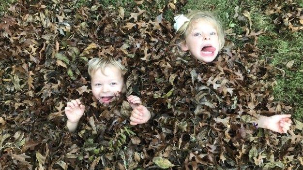 Fall Photos - November 15, 2018
