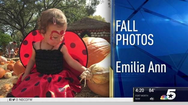 Fall Photos - October 24, 2016