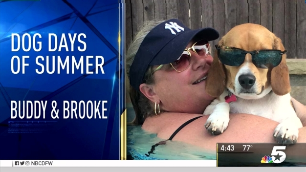 More Dog Days of Summer - Aug. 22, 2016