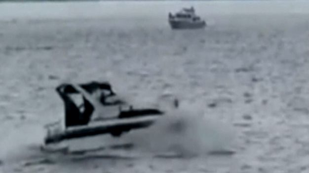 Speeding Boat Strikes Whale