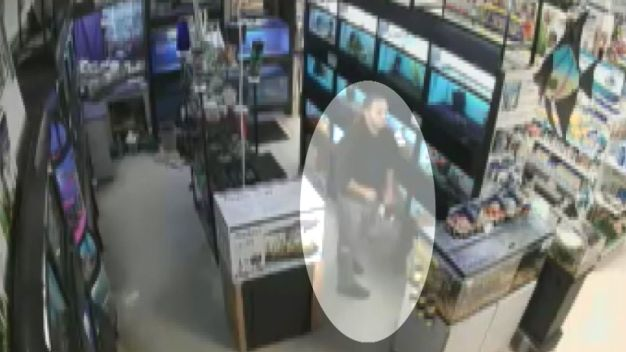 Man Steals Fish By Hiding Them in His Pants