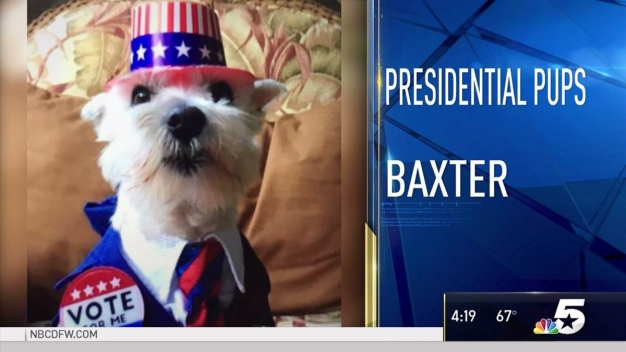 Presidential Pups - February 20, 2017