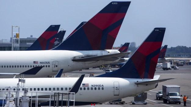 Texas Pet Store Owner Sues Delta Air Lines Over Dead Lizards