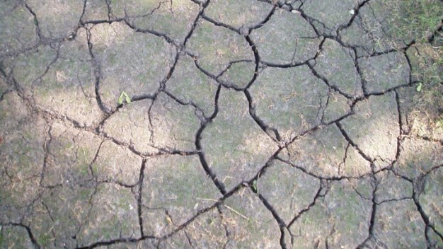 Rain Eases Drought But Doesn't End It