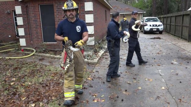 More Than 100 Snakes Rescued From Burning Texas Home