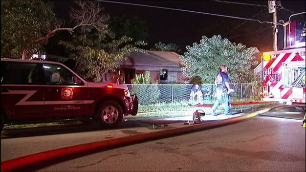 Cats Wake Up Woman After House Catches Fire