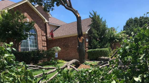 Storm Knocks Down Trees, Cuts Power in Highland Village