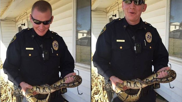 Officer Finds Snake Wrapped Around Driver's Neck