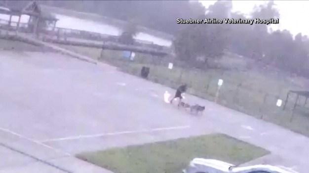 Texas Man Struck by Lightning