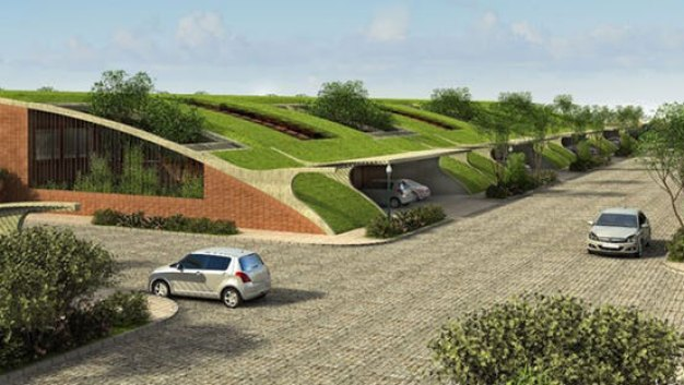 Frisco Approves Homes With Grass Roofs