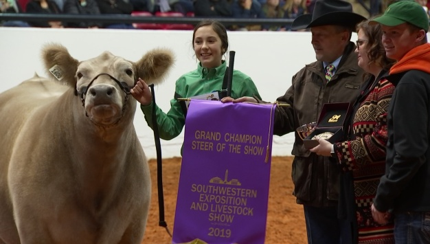 FW Stock Show Awards 2019 Junior Grand Champion Steer