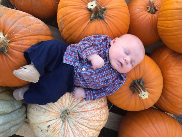Your Fall Photos - 2016 - Gallery II