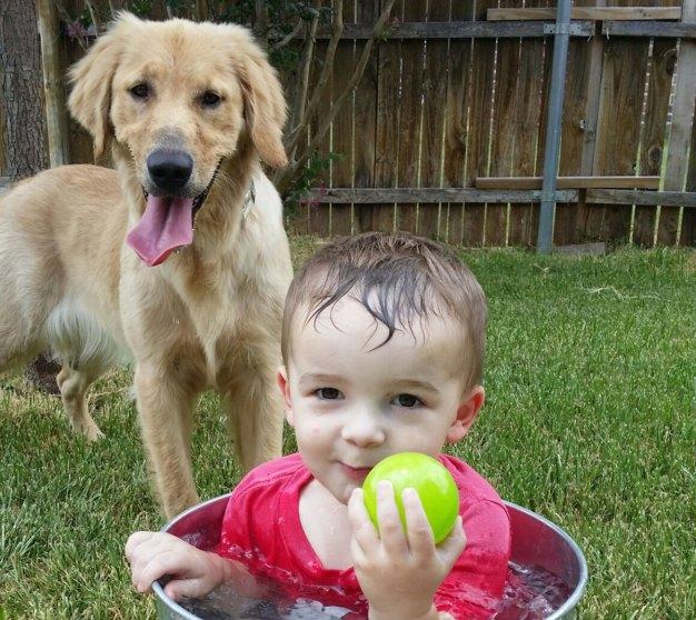 More Dog Days of Summer - July 27, 2016