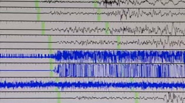 Earthquake Rattles Venus: USGS