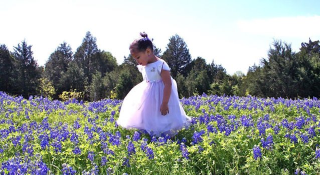 Sitting Pretty: Texas Bluebonnet Viewer Photos