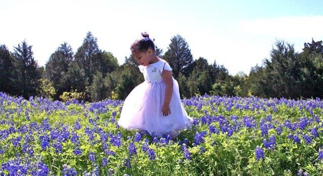 Sitting Pretty: Texas Bluebonnet Viewer Photos