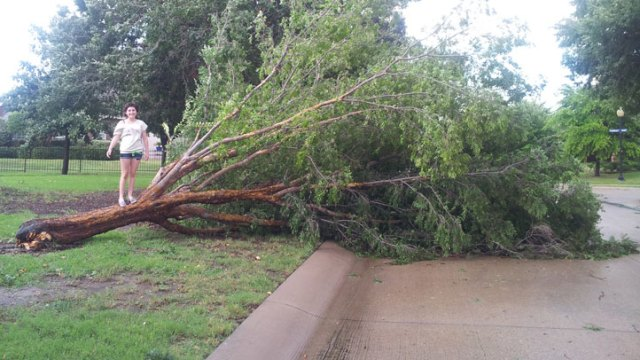 Your Storm Photos - July 20, 2012