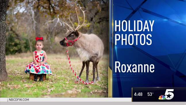 Holiday Photos - December 30, 2016