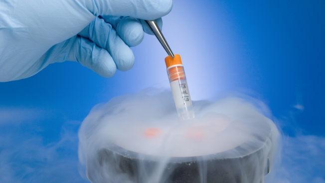 Couple Has Baby From Embryo Frozen 24 Years Ago