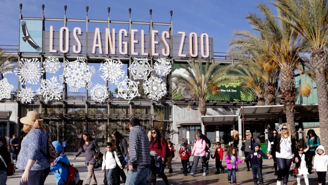 Free Student Entry at LA Zoo, Museums if Teachers Strike