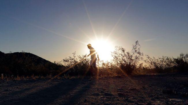 Under the Tucson Sun