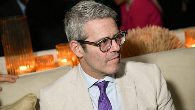 Andy Cohen Pushes to Allow Surrogacy Agreements in New York
