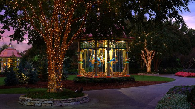 A Christmas Dream Becomes Holiday Magic at the Dallas Arboretum