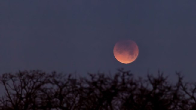 [DFW] PHOTOS: Super Blue Blood Moon Over North Texas
