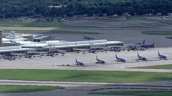 Southwest Flight Returns to Love Field After Bird Strike: FAA