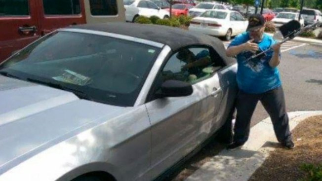 Charges Dropped Against Ga. Veteran Who Smashed Car to Save Dog