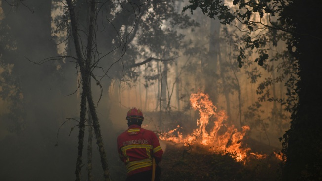 Dramatic Escapes Mark Survivors' Stories From Portugal's Deadly, Still-Raging Wildfires