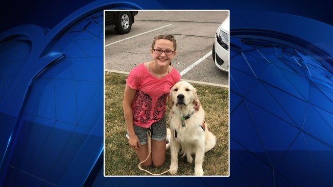 NTX Family's Service Dog Killed, Sheriff Investigating Case as Animal Cruelty