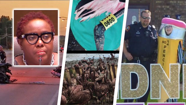 In Case You Missed It Weekend News Digest: Sunday, July 21
