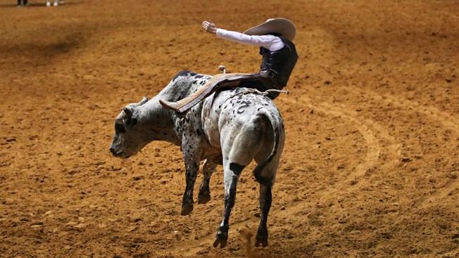 North Texas Fair and Rodeo Kicks-Off Friday