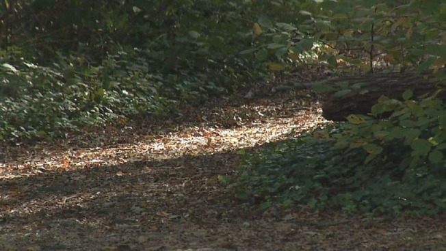 Couple Accused of Leaving 5-Year-Old in Minn. Woods as Punishment