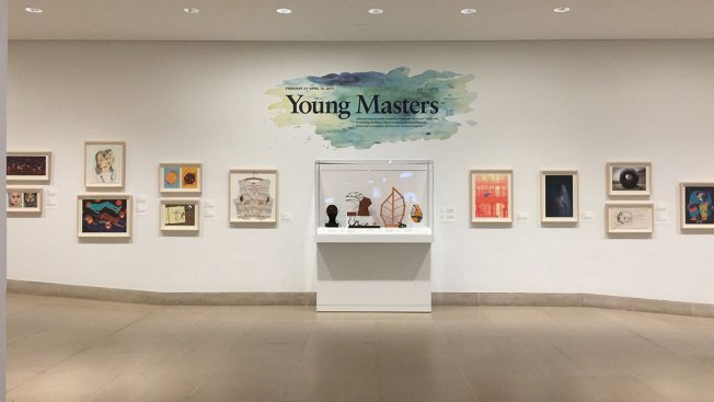 Young Masters Exhibition at the Dallas Museum of Art Highlights Student Talent