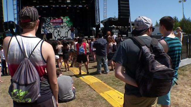 Suburbia Music Festival Aftermath