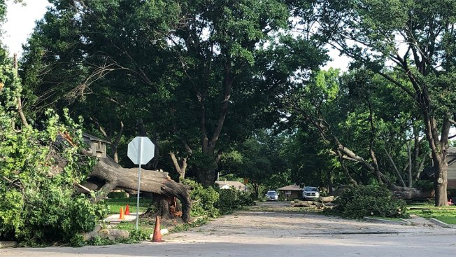 Dallas Sanitation Will Pick-Up Brush, Storm Debris