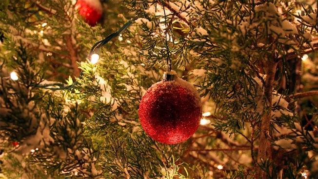 Fort Worth's Christmas Tree Arrives Nov. 18