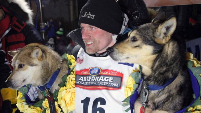Doping Scandal Roils Another Sport: Dogsledding