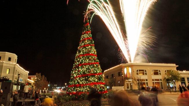 Image result for holiday in the park firewheel