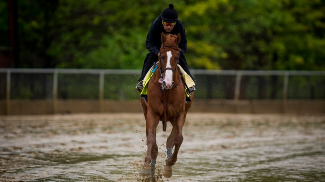 Belmont Distance, Fatigue to Test Justify in Triple Crown Bid