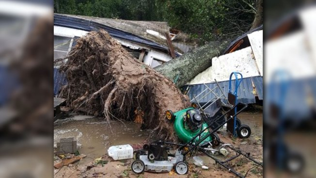 Sleeping Woman Killed When Massive Oak Tree Falls Onto Mobile Home