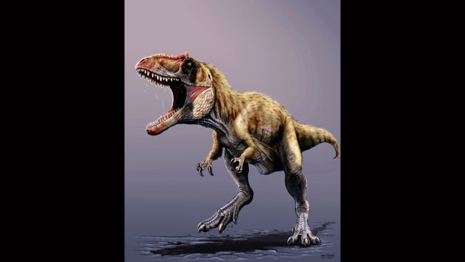 Killer Dinosaur That Preceded T. Rex Found in Utah